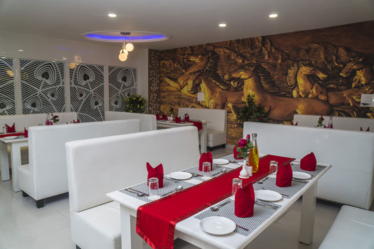 hotel kingfisher udaipur