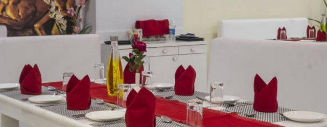 hotel-kingfisher-udaipur